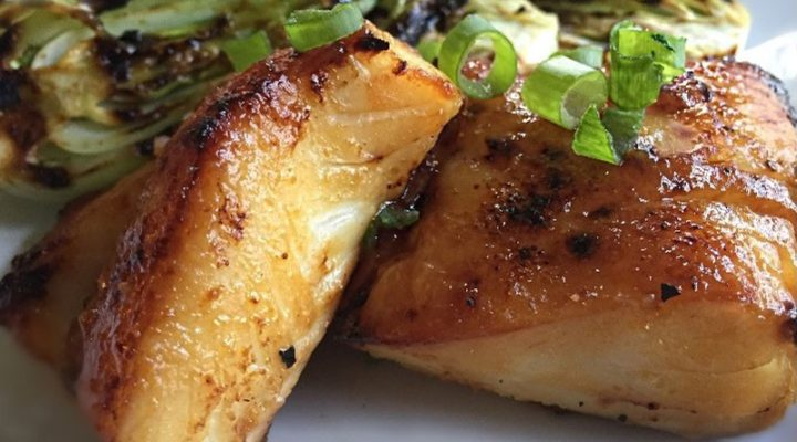 Miso Glazed Halibut with Grilled Baby Bok Choy
